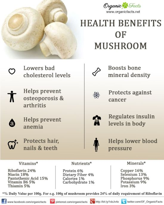 mushroominfographic