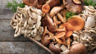 5 Amazing Mushroom Substitutes