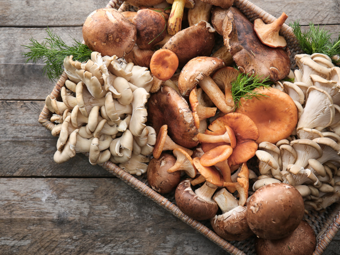15 Types Of Mushrooms & How To Use Them