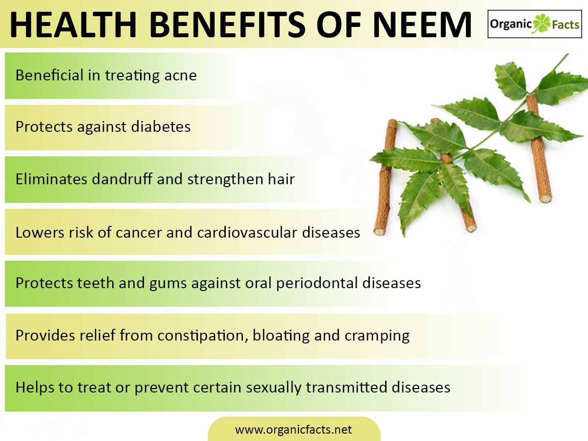 benefits and uses of neem tree Native to burma in india, the neem tree, known in botanical terms as azadirachta indica derives its name from azad meaning free, dirakht denoting a tree, ihind means of indian origin.