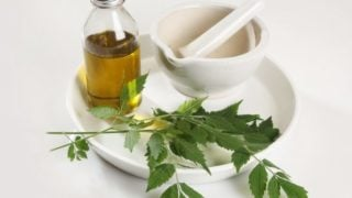 Does Neem Oil Insecticide Work?