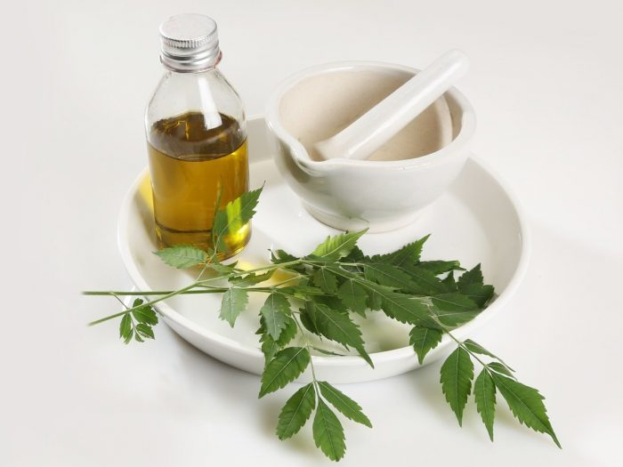 Neem oil in a bottle in a white ceramic plate with mortar and pestle and some neem leaves