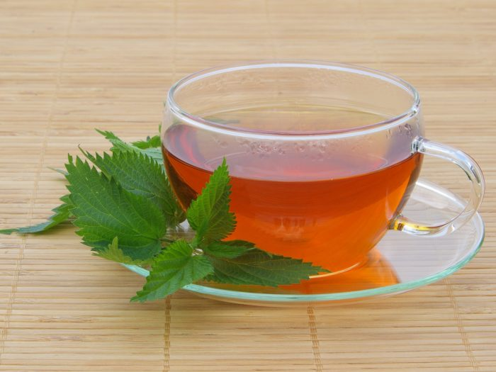 A cup of nettle tea with fresh nettle leaves