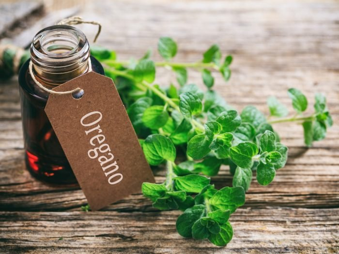 A bottle of oregano oil with oregano leaves on a wooden table