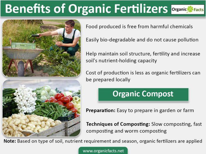 organicfertilizerinfo