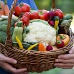Organic Food Stores in Washington