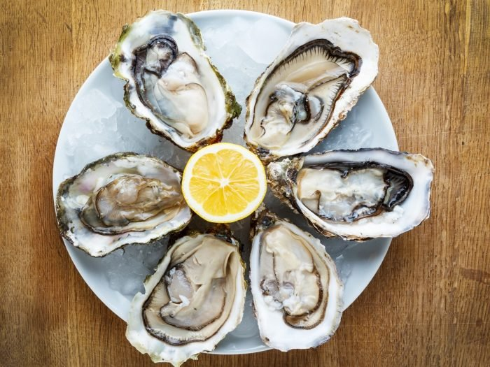 Image result for oysters