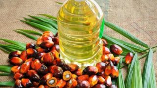 10 Best Palm Oil Reviews 2017 – How to Choose the Perfect Oil for Your Needs