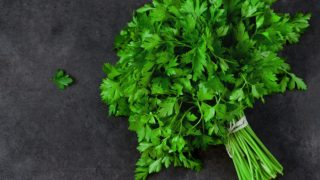 A bunch of parsley on a dark background