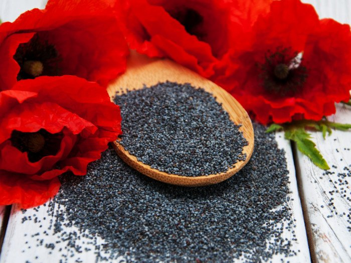 Amazing Benefits of Poppy Seeds For Skin, Hair & Sleep
