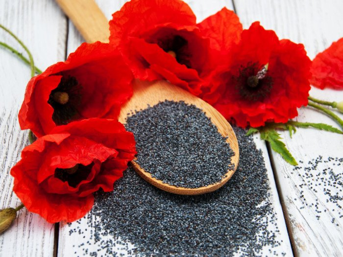 A spoonful of poppy seeds and red poppy flowers on a wooden background