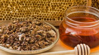 Propolis, bee honeycomb, and a jar of honey with a honey dipper