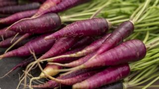 Purple Carrot: Nutrition & Benefits