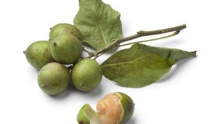 Quenepas: Nutritional Value and Benefits