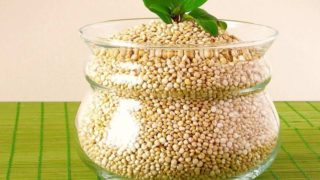 Quinoa seeds in a glass pot with a plain background