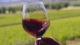 5 Surprising Red Wine Substitutes