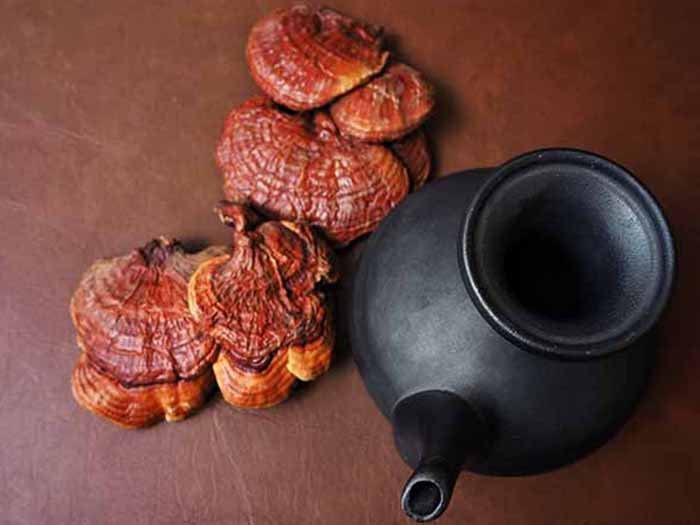 Reishi mushrooms next to a black teapot against a brown background