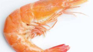 Can Pregnant Women Eat Shrimp?