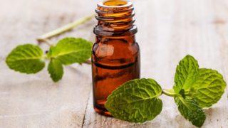 10 propriétés surprenantes de l'huile essentielle de menthe verte