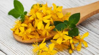 10 Amazing Benefits of St. John's Wort