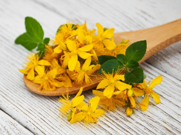 A wooden spoon of fresh St. John's Wort flowers