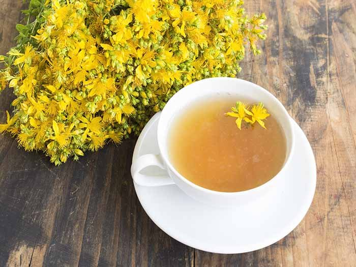 Dried yellow St. John's wort flowers and St. John's wort tea in a white teacup