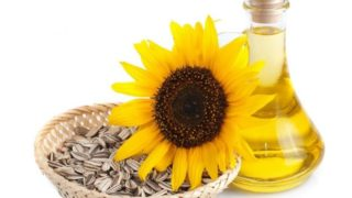 10 Best Sunflower Oil Reviews 2017-What You Need To Know When Buying
