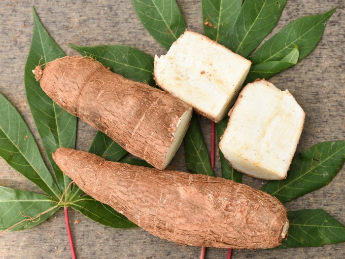 9 Amazing Tapioca Benefits   Organic Facts