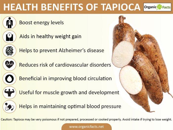 tapiocainfo