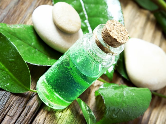 Essential oil in a small glass jar with a lid, placed next to tea tree leaves