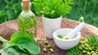 11 Incredible Benefits of Thuja Essential Oil