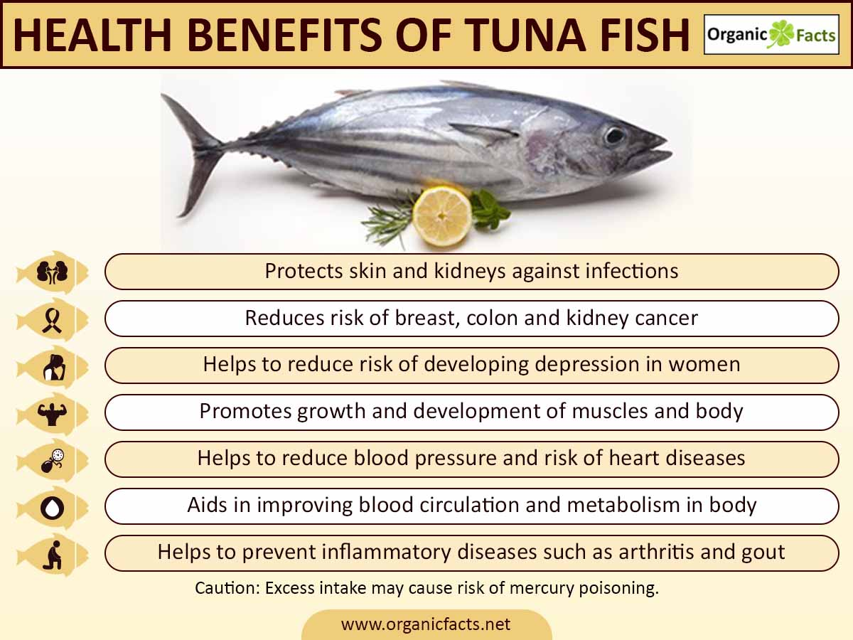 13 amazing benefits of tuna fish organic facts