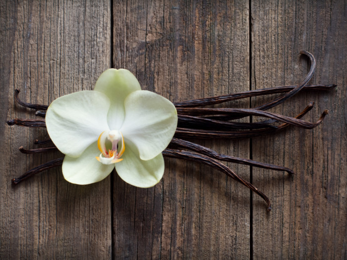 Vanilla sticks with a flower on a wooden table