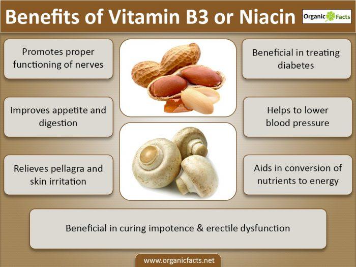 vitaminb3info