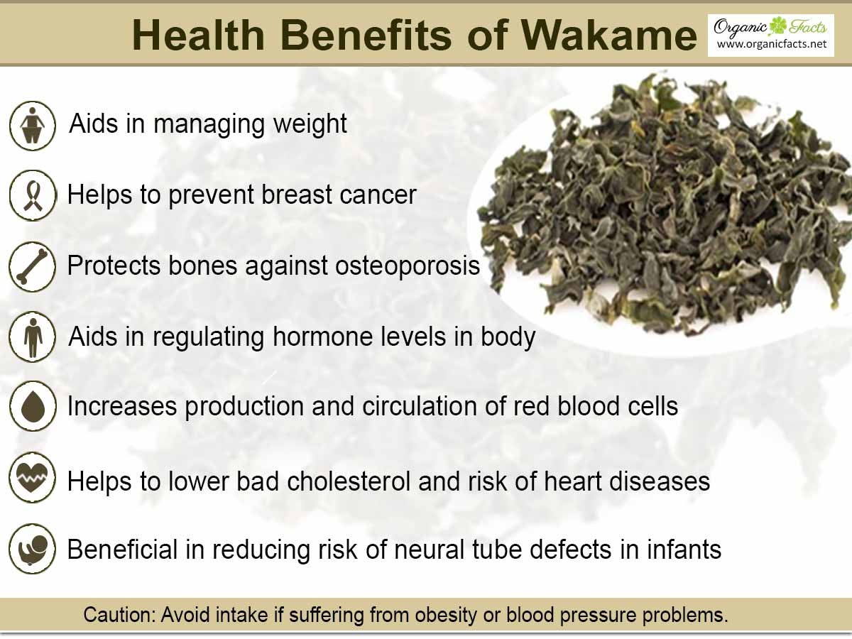 health benefits of seaweed More:foods for healthjapanese food benefitslivingomega 3 in seaweed seaweed benefitsseaweed dietseaweed for weightlossseaweed.