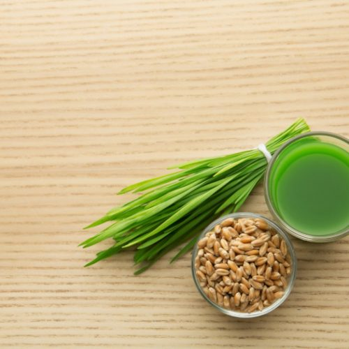 Shot glass of wheat grass juice, bowl with grains and sprouts on wooden table