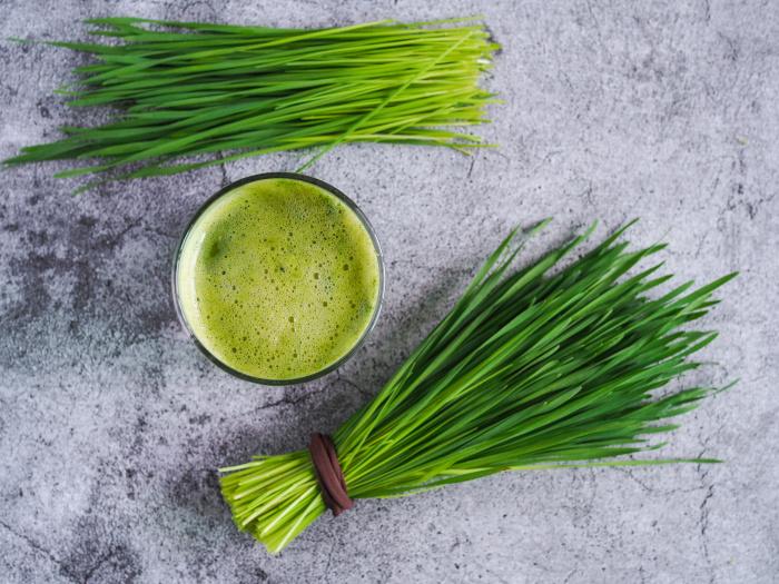 Wheatgrass juice and wheatgrass on a grey background