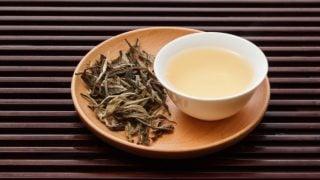10 Amazing Benefits of White Tea