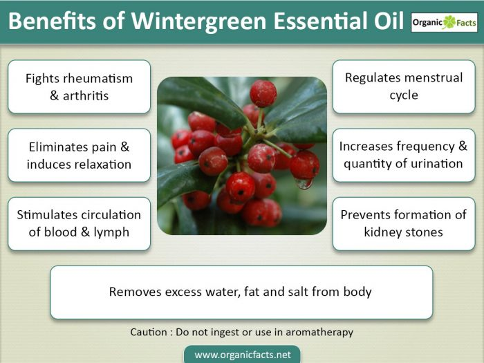 wintergreeninfographic