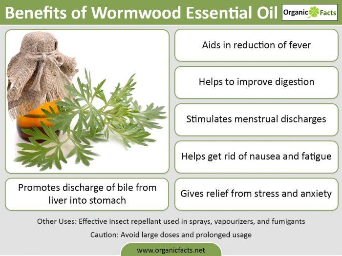 wormwoodessentialoilinfo
