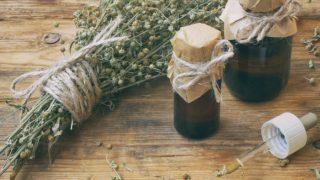 10 Amazing Benefits & Uses of Wormwood