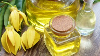 Bottles of ylang ylang oil with ylang ylang flowers